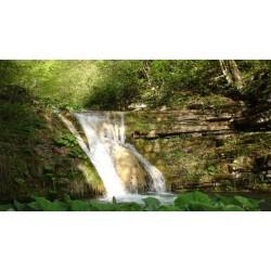 Bir Tatlı Huzur Almak İçin Suya Tutunan Şehir Sinop